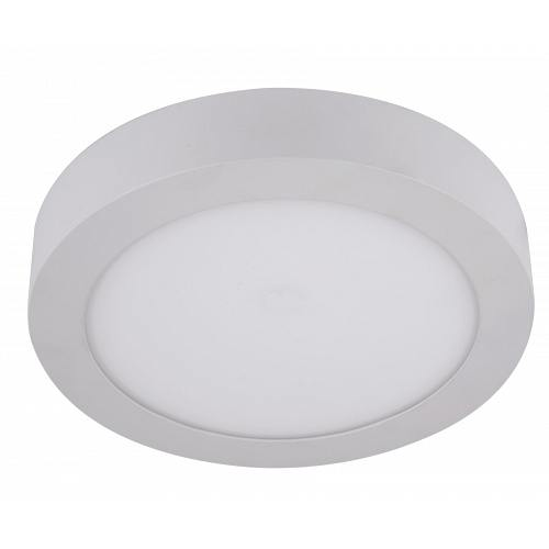LED white downlight outdoor instalation 220V 12W IP40 120D f170