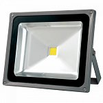 LED floodlight silver 220V 30W IP65 120D warm white 3300K Lighte
