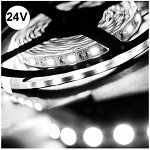 Led Strip 14.4 Watt 60 smd 5050  Cold White IP65