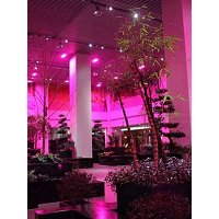 Grow Light E27-PAR38 15w