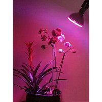 GROW LIGHT E27-PAR30 8W