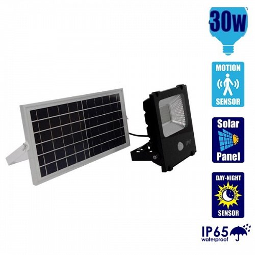 30W Solar LED Projector with Motion Sensor Cool White